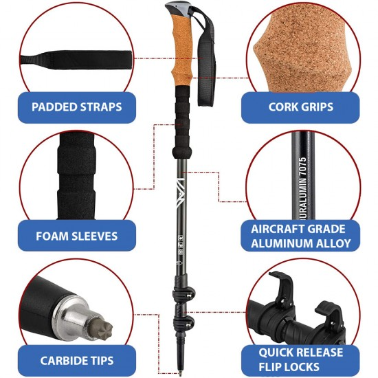 Physiotherapy Room Pro Carbon Fibre Walking Poles
